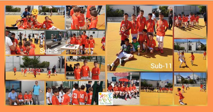 V Torneio de Futsal Feliciano Oleiro